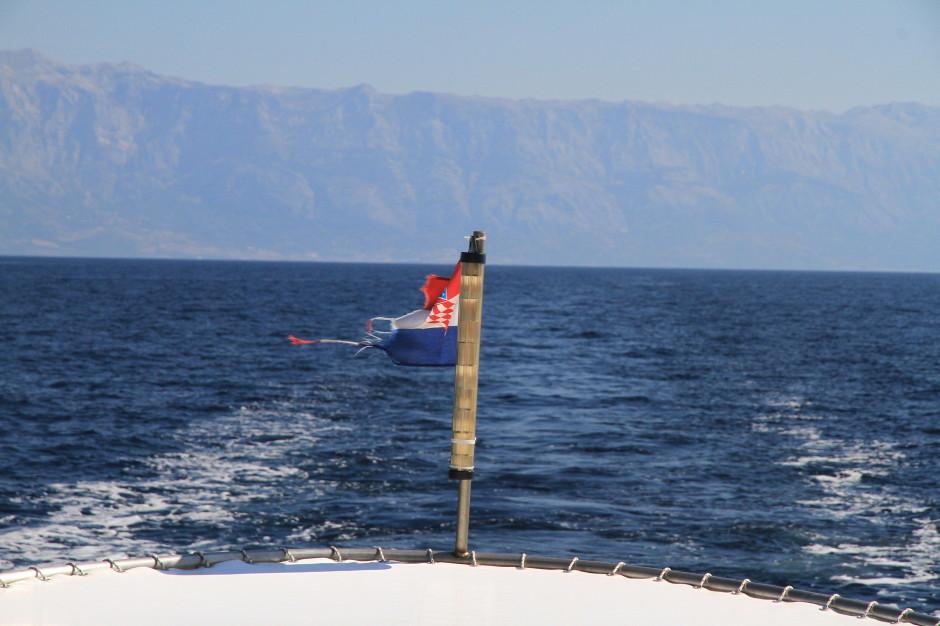 croatia-travel-service-fish-02